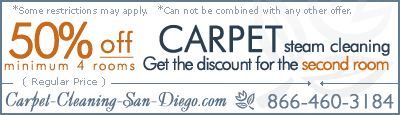 carpet cleaning steam