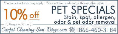 pet odor and stains removal